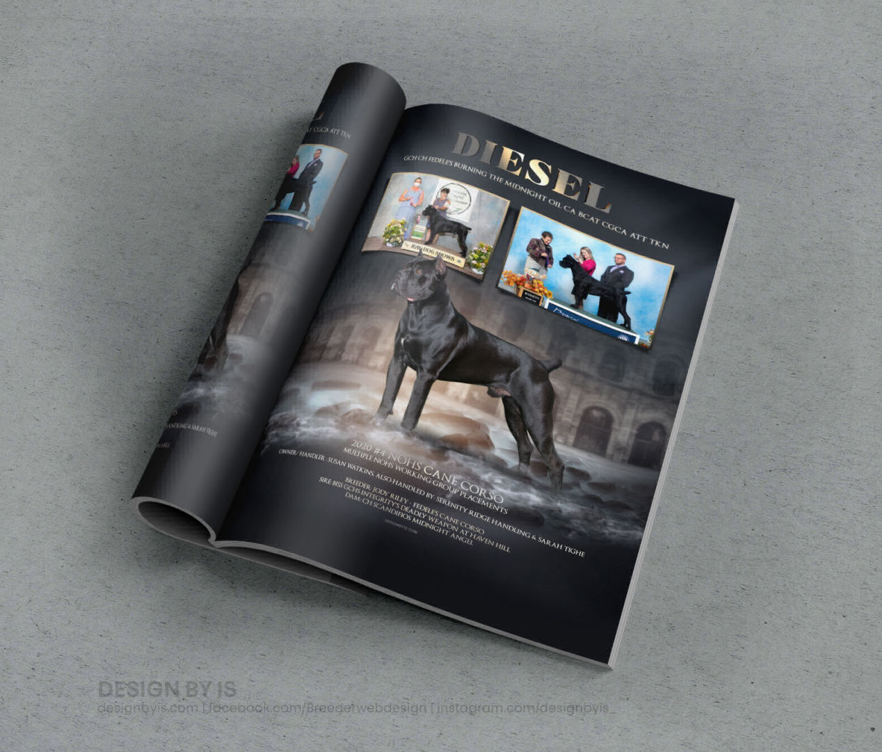Ads for dog magazine. Chow Chow